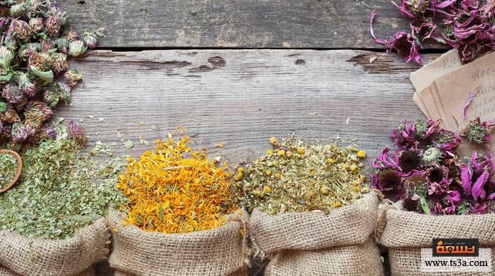 أطعمة تقليل نمو الشعر علاج زيادة الشعر في الجسم بالأعشاب