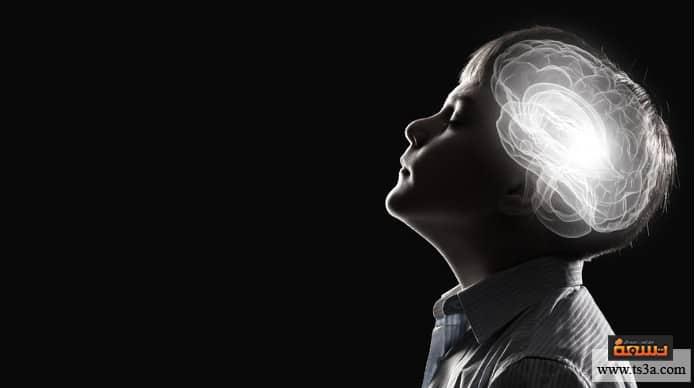 تشكل المخ كيف يتم تشكل المخ عند الجنين؟