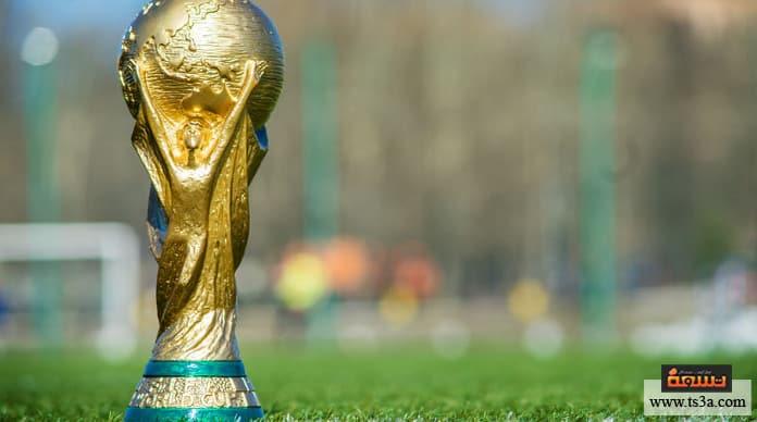 تنظيم كأس العالم