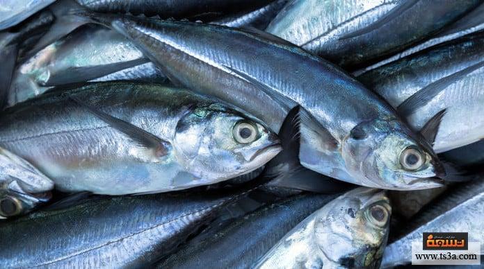 سمك البحر أسماك المزارع
