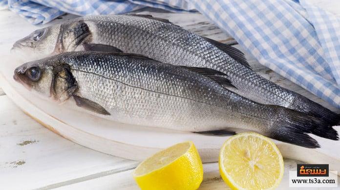 سمك البحر سمك البحر