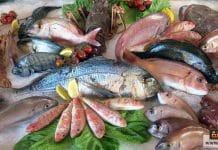 سمك البحر