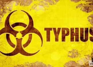مرض التيفوس