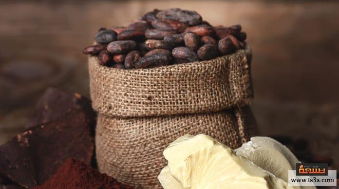 فوائد الكاكاو