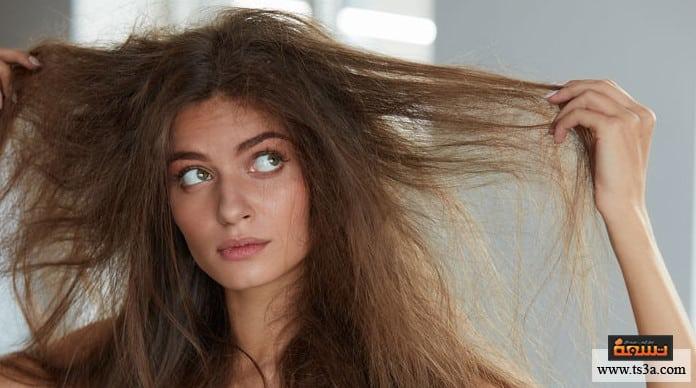 كيف يمكن علاج جفاف الشعر بالوصفات الطبيعية الآمنة تسعة