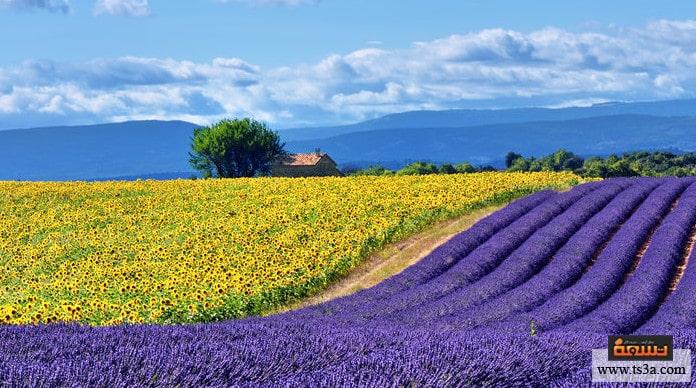 السياحة في فرنسا أفضل وأشهر مدن السياحة في فرنسا