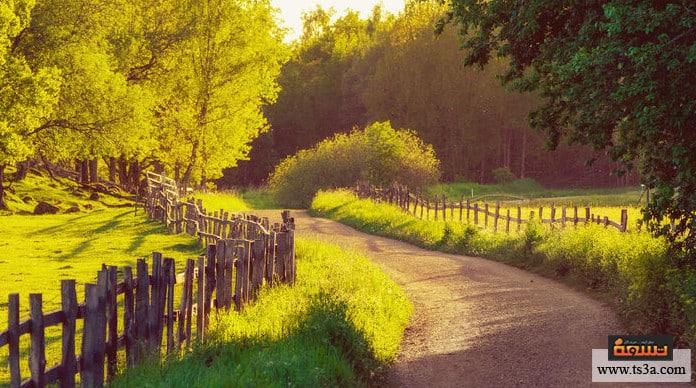 السياحة في السويد أفضل معالم السياحة في الريف السويدي