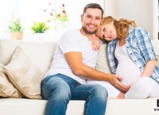 دعم الحامل