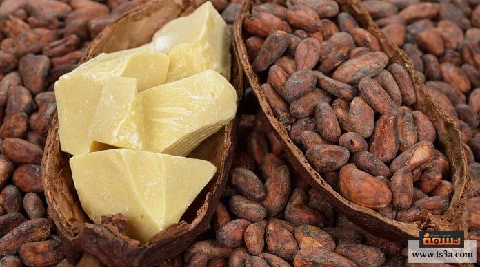 زبدة الكاكاو ما هو بديل زبدة الكاكاو؟