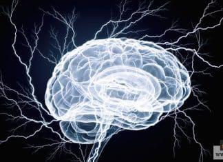 زيادة كهرباء المخ