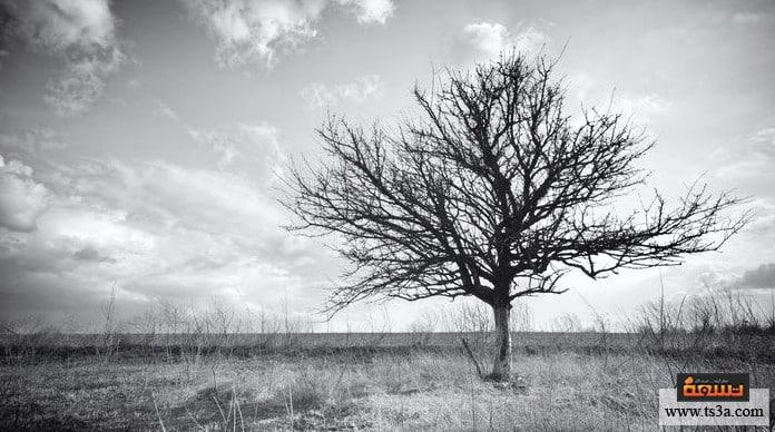 خبر الوفاة مخالفة الهدف من وجودنا