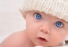 تسمين الرضع