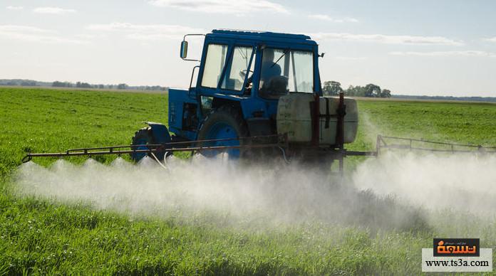 آفات المحاصيل ما الآفات الحقلية؟ وما أنواعها؟