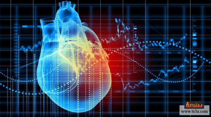 ضربات القلب التكوين التشريحي للقلب