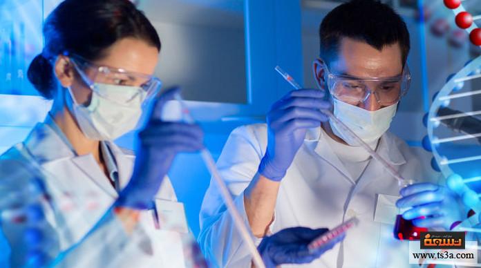 الطفرات الجينية كيف تحدث الطفرات الوراثية؟