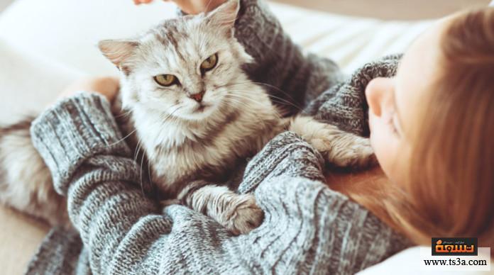 حساسية الحيوانات احتياطات منزلية للحد من حساسية الحيوانات الأليفة