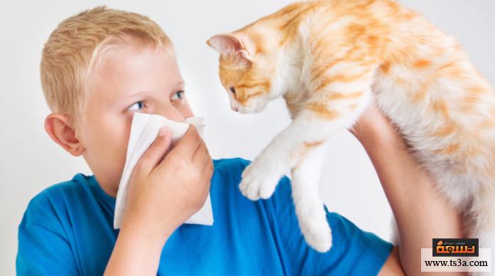 حساسية الحيوانات