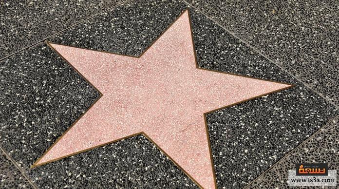 صناعة النجم الالتزام بالصورة المُثلى للنجم
