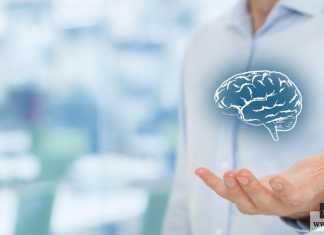 علم النفس التطوري