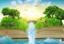 قراءة الفلسفة