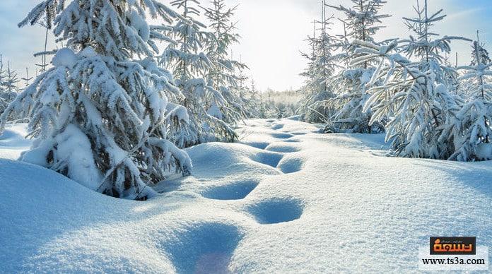 برودة الشتاء ما أغرب فصل شتاء عرفته البشرية؟
