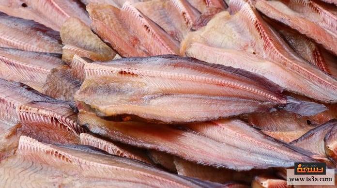 السمك السنجاري السمك السنجاري البوري