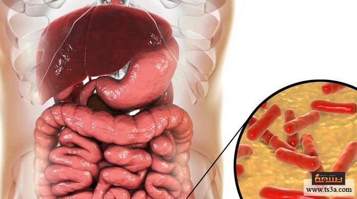 بكتيريا الأمعاء بكتيريا الأمعاء والاكتئاب