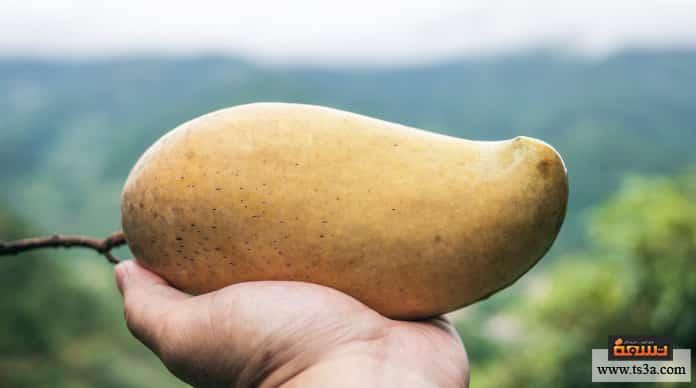 عصير البطاطس هل أكل البطاطس النيئة مضر؟