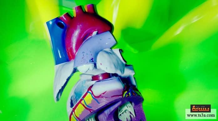 قصور القلب أسباب حدوث قصور القلب