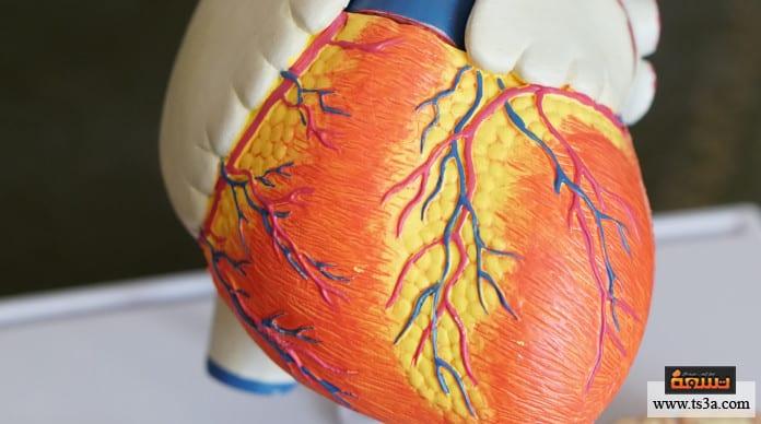 قصور القلب ما هو قصور القلب ؟