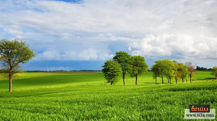 الدول صديقة البيئة كينيا من الدول الأفريقية صديقة للبيئة