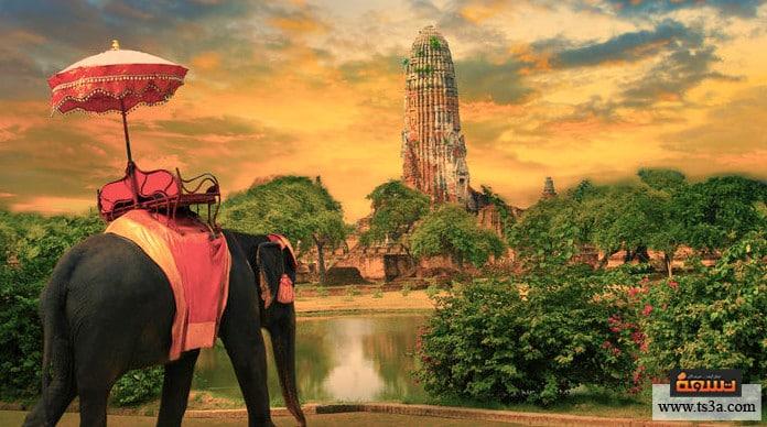 السياحة في بانكوك أنشطة سياحية في سي لايف بانكوك