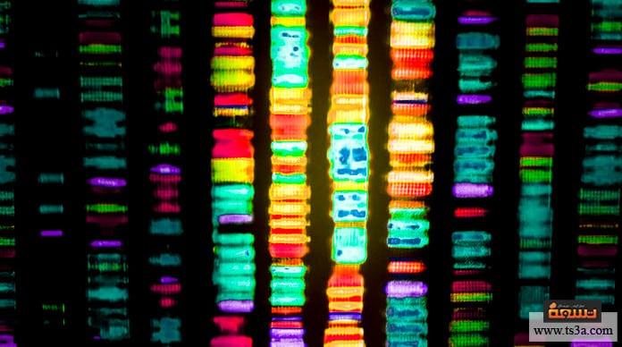 خلل الكروموسومات أنواع خلل الكروموسومات