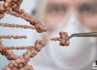 خلل الكروموسومات