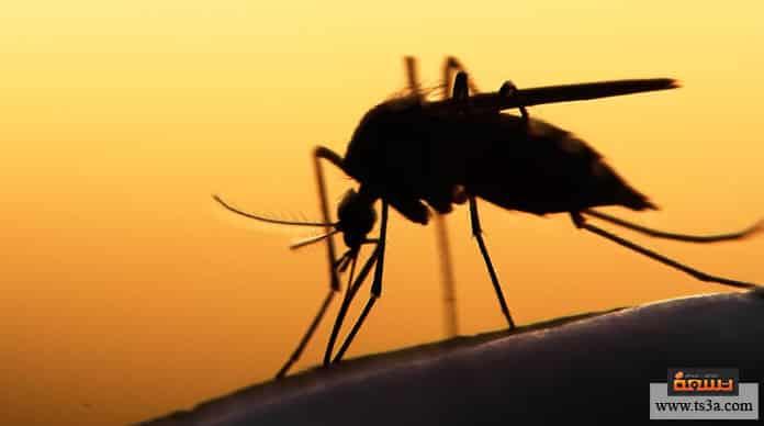 مرض الملاريا أعراض الملاريا عند الأطفال