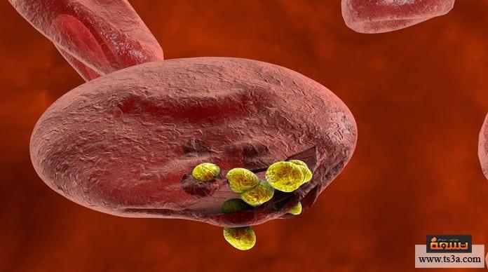 مرض الملاريا مضاعفات مرض الملاريا