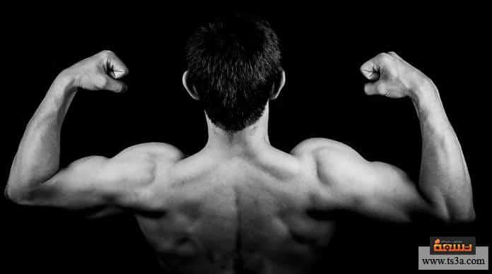 تمرين عضلة الترايسبس للحصول على أذرع ضخمة